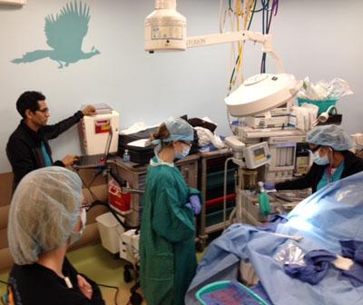 Pediatric Anesthesiology Fellowship Simulation Program