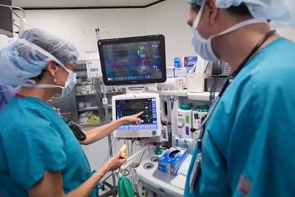 Anesthesia Team Member