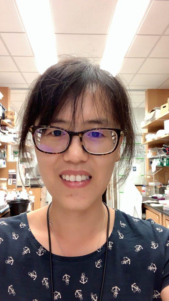 Yanyan Yang PhD Sancar lab