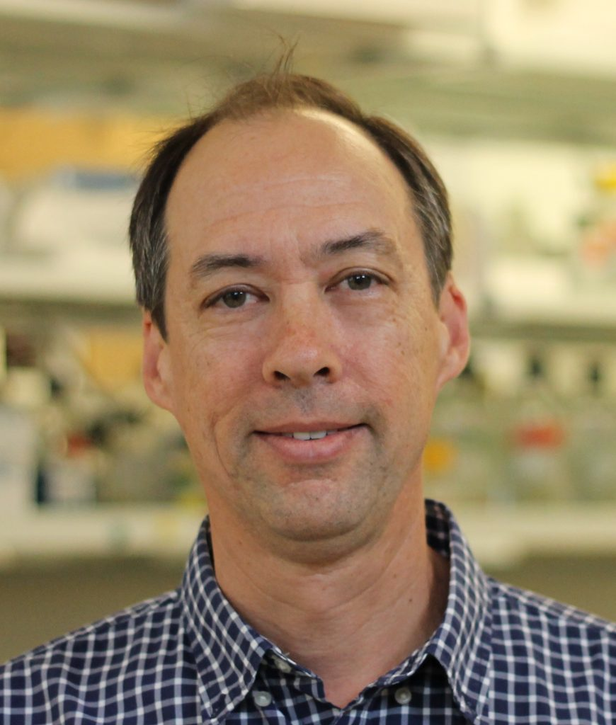 Picture of Andrew Lee PhD Joint Professor of Biochemistry and Biophysics and Pharmacy