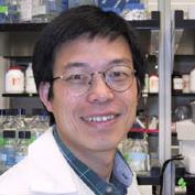 Yi Zhang, PhD (Study Lead Author)
