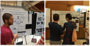 2 images of posters presentations on August 13 2019