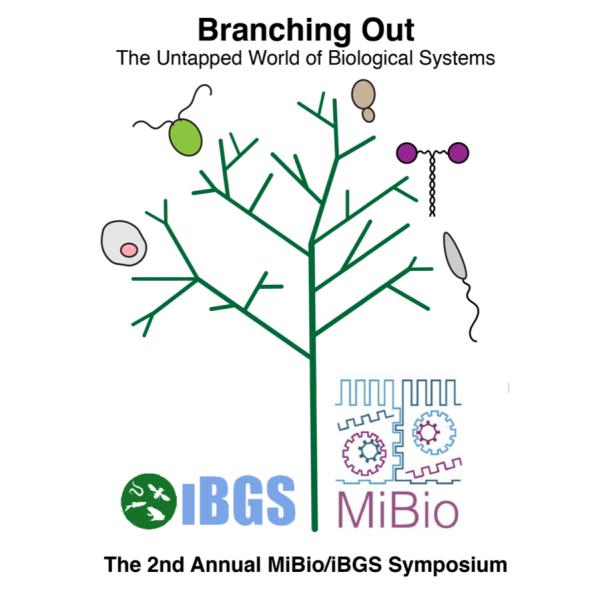 branching out logo 2021