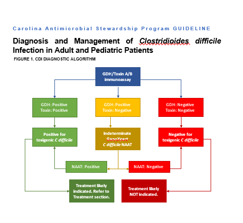 image of CDI guideline