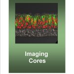 Imaging cores