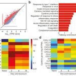 SARS-CoV-2 Paper Published in Nature