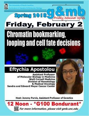 Friday - GMB Spring Seminar Series: Eftychia Apostolou