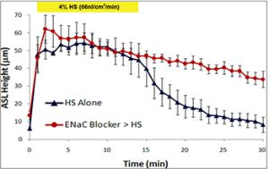 Airway Surface Liquid Height in Human Bronchial Epithelial Culture Response to Aerosolized Hypertonic Saline +/- Long-Acting Na+ Channel Blocker