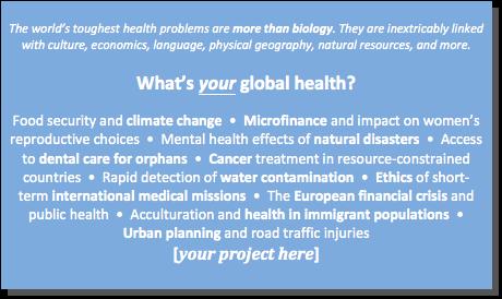 Global Health Grant