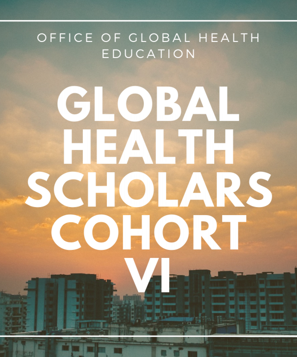 OGHE names five new resident and fellow Global Health Scholars