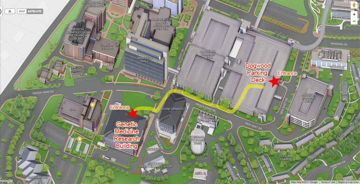 A map of campus buildings shwoing the path from the Dogwood Deck parking to the Genetic Medicine Building in yellow highlighting.