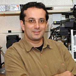 Dr. Troy Ghashghaei