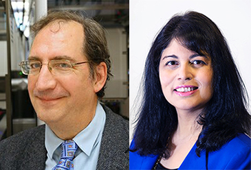 This is a picture of pharmacology faculty members, Bryan Roth and Blossom Damania.