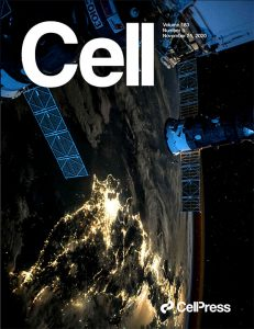 """Cover of Cell in Nov 25, 2020 issue with article Jonathan Schisler is an author on in collaboration with lead author, Afshin Beheshti, that describes the results of NASA spaceflight studies on miRNA. The issue features a review (Afshinnekoo et al., 2020) and a research article (da Silveira et al., 2020) as part of a special collection of papers on """"The Biology of Spaceflight"""" published across Cell Press. The cover art shows city lights spanning Japan at night, glimmering below Earth's thin atmosphere, as well as the International Space Station with a docked Soyuz Space Capsule (top). Photograph by Scott Kelly."""
