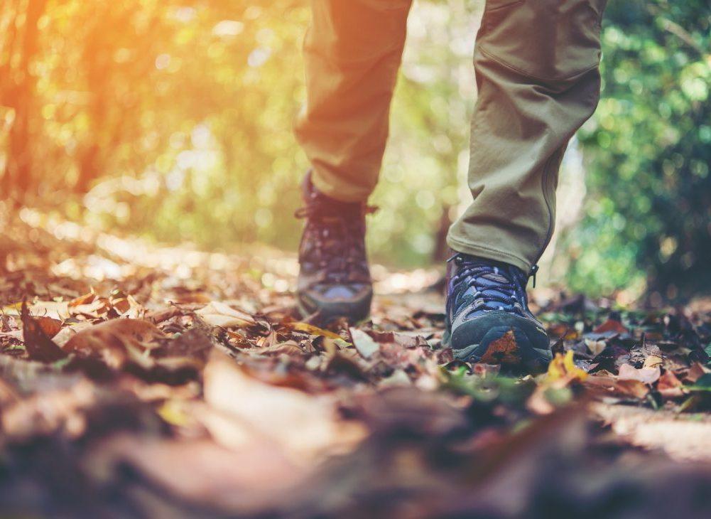 feet on path addiction fellowship